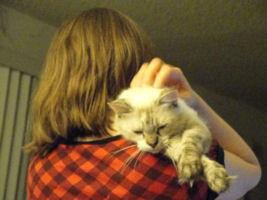 Amber-Cat05
